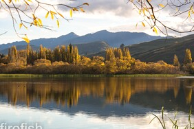 "Lake Hayes in Autumn, Queenstown - 12"" x 18"" Limited Time Only"