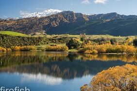 "Coronet Peak from Lake Hayes in Autumn - 12"" x 18"" Limited Time Only"